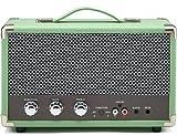 GPO Westwood Retro 25 Watt Lautsprecher mit Subwoofer, Cinch-Eingang, Bluetooth mit Retro-Gitter und Tragegriff - Mintgrün
